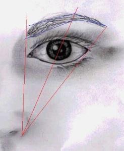 eyebrowdiagram